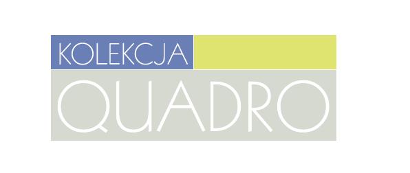 Logotyp strony www poświęconej kolekcji mebli Quadro